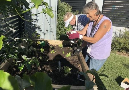 Small gardening at inala house