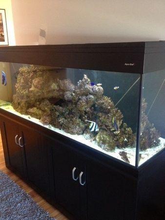 Small aquarium