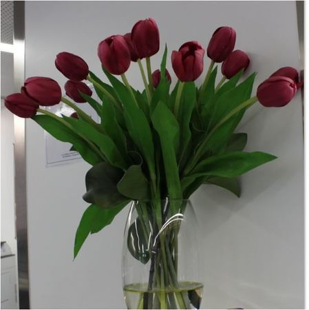 Small tulips bms