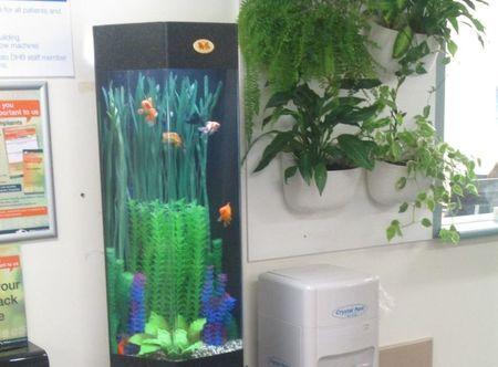 Small fish tank 1